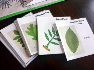16 leaf cards