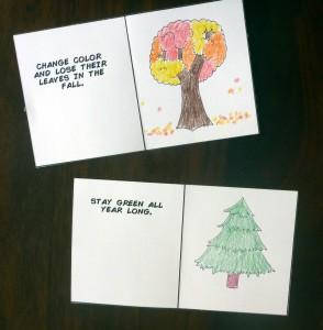 17 tree types