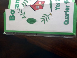 22 hole punched lapbook